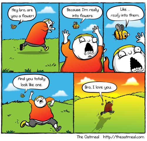 misunderstandings,critters,bees,flowers,web comics