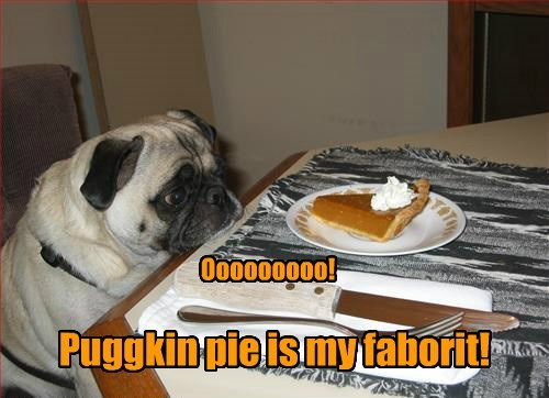 Puggkin pie is my faborit! Ooooooooo!