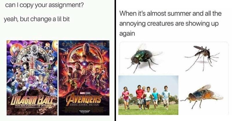 twitter random memes funny memes funny tweets stupid memes dumb memes - 8285189