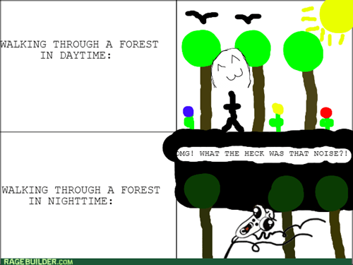 Forest,daytime,night time