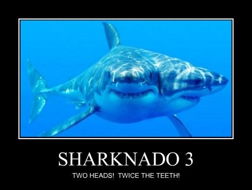 sharknado sharks funny weird - 8285391872