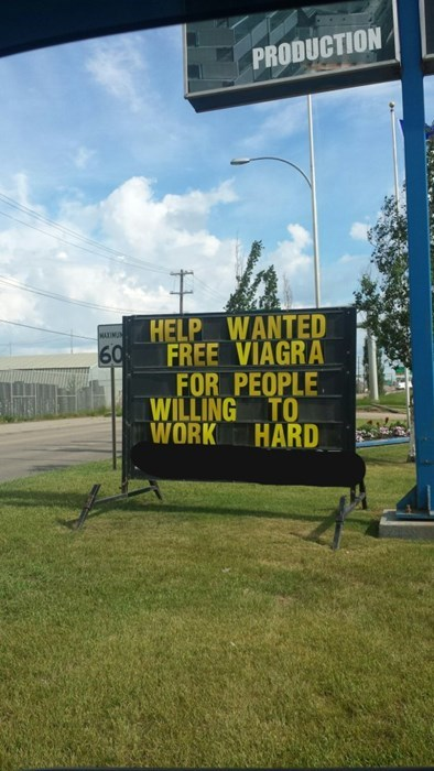 viagra monday thru friday sign help wanted g rated