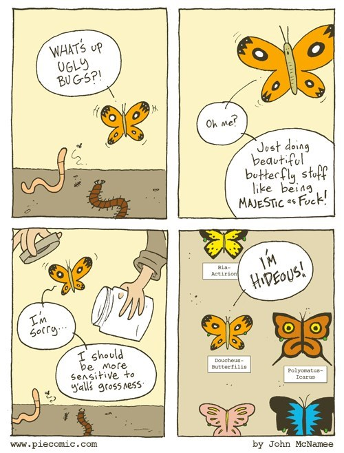 bugs,butterflies,sad but true,beauty,web comics