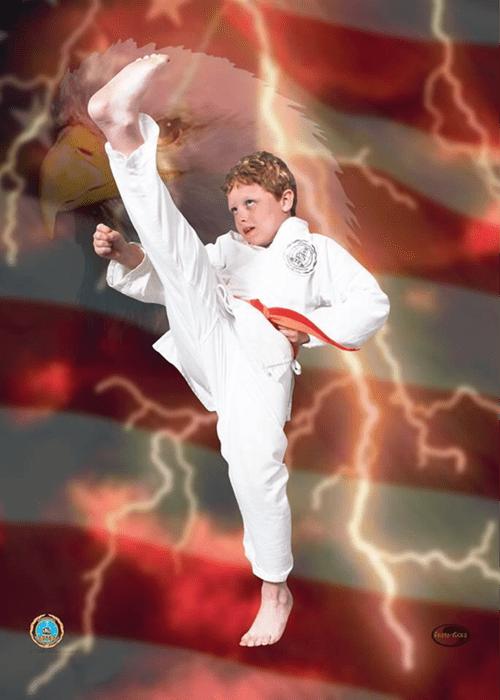 karate communism - 8286623744