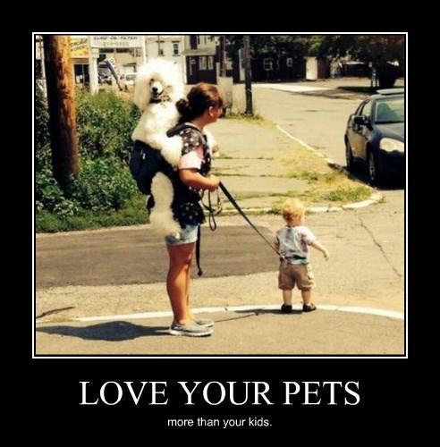wtf pets kids funny - 8286636288