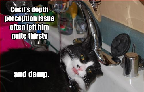 Cecil's depth perception issue often left him quite thirsty and damp.