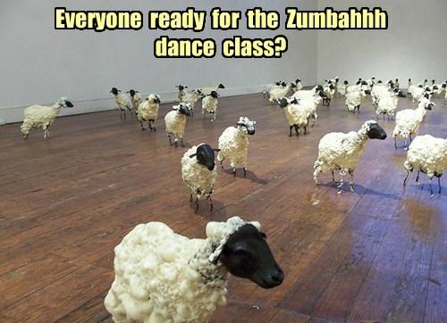 puns sheep funny - 8287366656