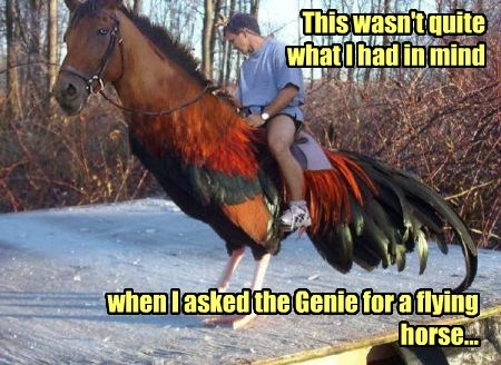 genie chickens wish horses funny - 8288366080