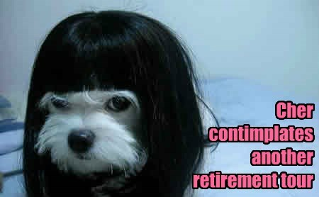 Cher contimplates another retirement tour