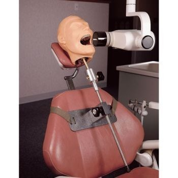 monday thru friday scary dentist mannequin - 8288947200