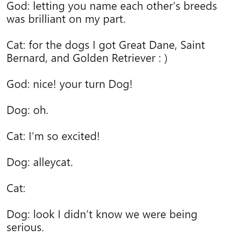 god conversations funny tweets animals - 8289029