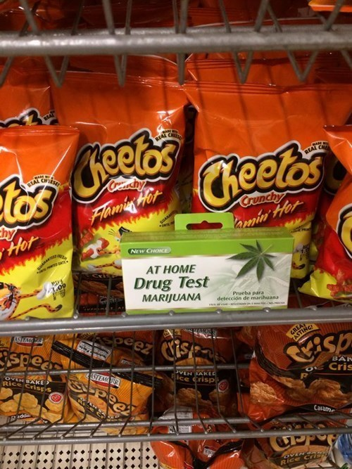 drug testing marijuana cheetos - 8290345728