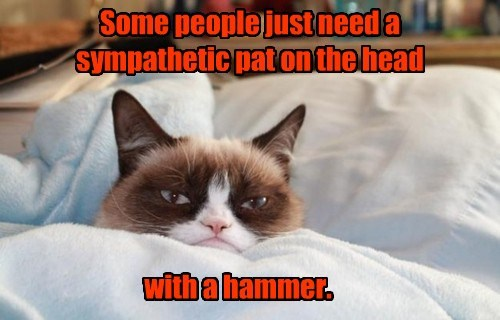Some people just need a sympathetic pat on the head with a hammer.