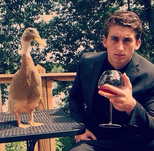ducks wine classy funny after 12 g rated - 8291096320