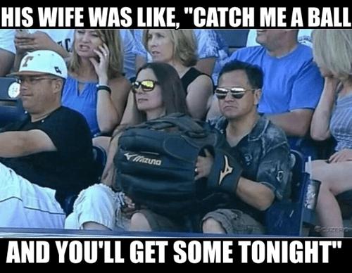 baseball - 8291540224