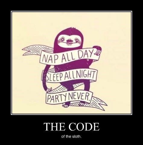 code,awesome,funny,sloth