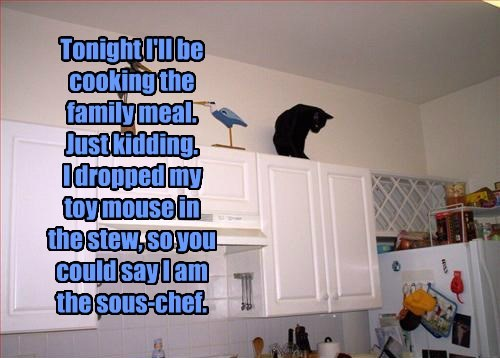 cooking Cats - 8292592384