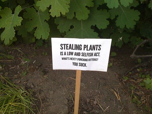 warning,sign,stealing
