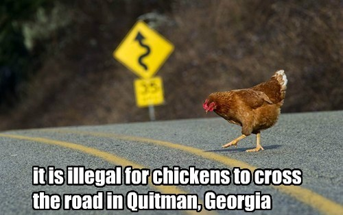 it is illegal for chickens to cross the road in Quitman, Georgia