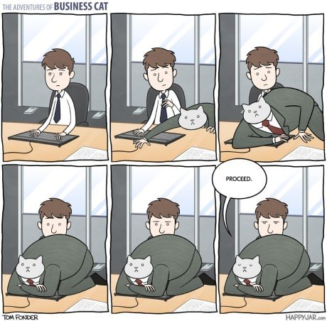 gifs Business Cat late capitalism Cats business - 8294917376