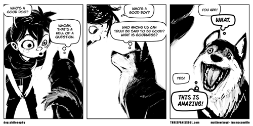 dogs,philosophy,web comics