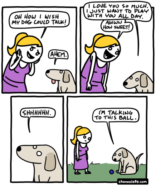 balls dogs love web comics - 8295172608