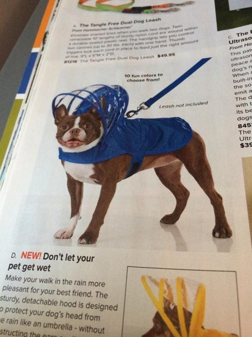 dogs jacket poorly dressed - 8295178496