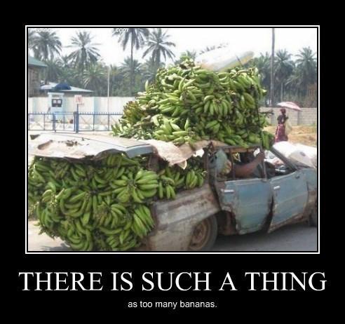 wtf bananas truck broken - 8295210240