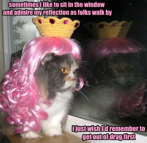 sometimes i like to sit in the window and admire my reflection as folks walk by i just wish I'd remember to get out of drag first