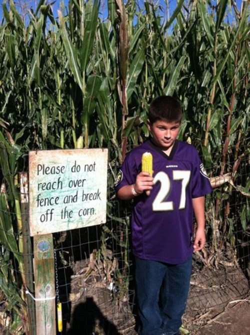 corn,baltimore ravens