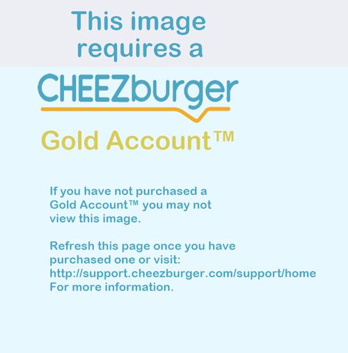 cheezburger cheezburger gold accounts - 8296206336
