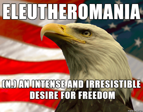 freedom,eagles,murica