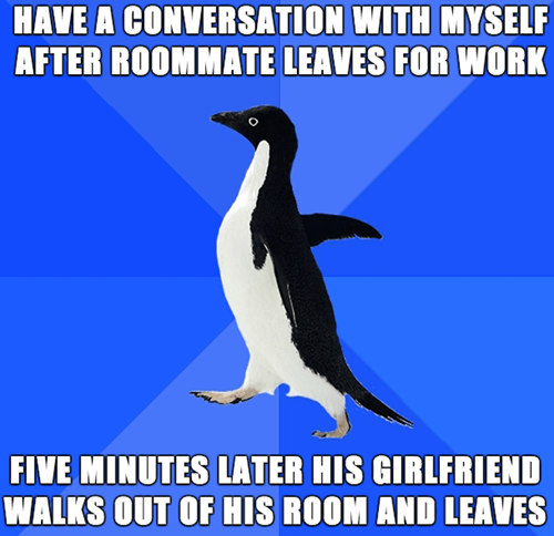 socially awkward penguin - 8296266240