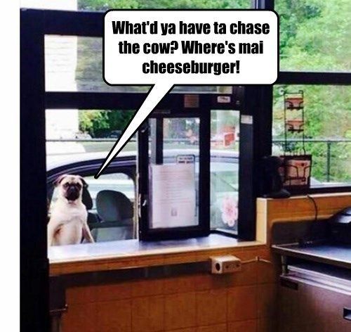What'd ya have ta chase the cow? Where's mai cheeseburger!