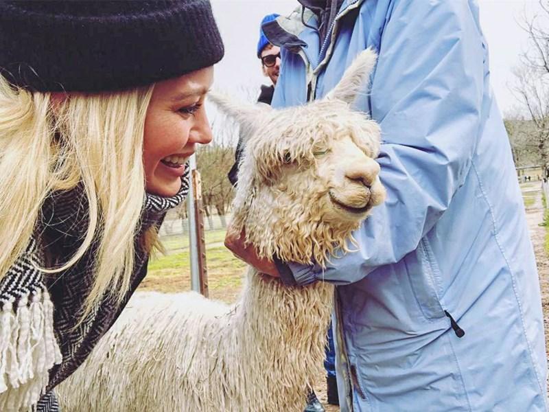 celeb with llama