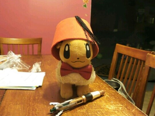 Pokémon IRL Plushie eevee cute doctor who