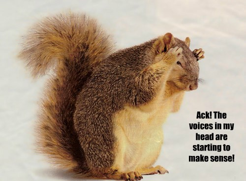 crazy voices squirrels - 8296941568