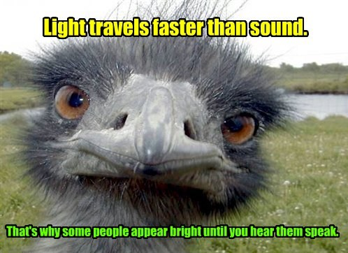 Light travels faster than sound. That's why some people appear bright until you hear them speak.