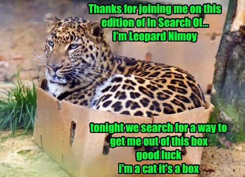 leonard nemoy puns Star Trek leopards - 8297801472