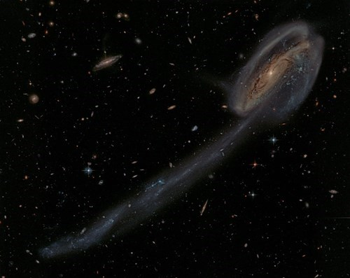 galaxy awesome Astronomy tadpole science