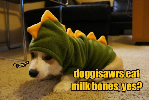 dogs,corgis,dinosaurs