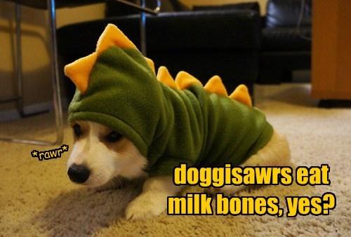 dogs corgis dinosaurs - 8298896896