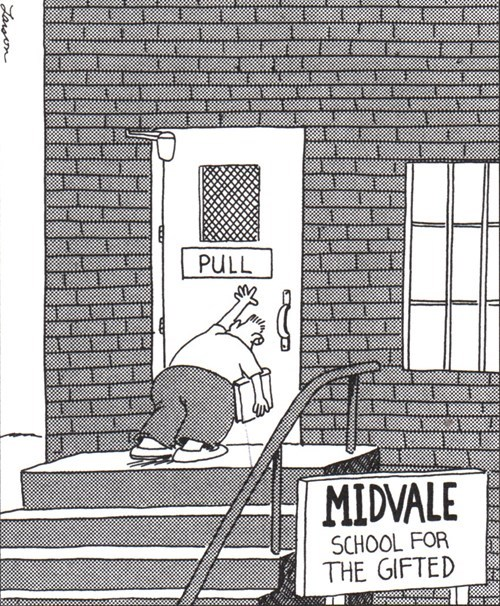 midvale,gifted,funny