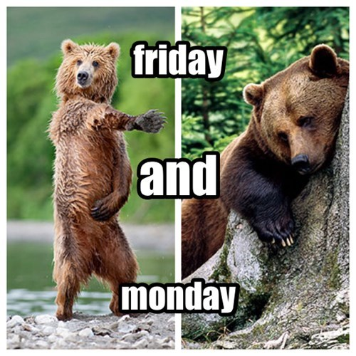 FRIDAY bears weekends monday