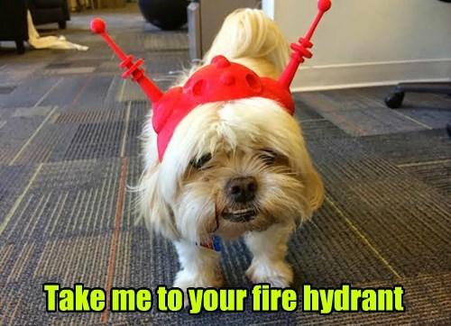 Aliens cute fire hydrant - 8299525888