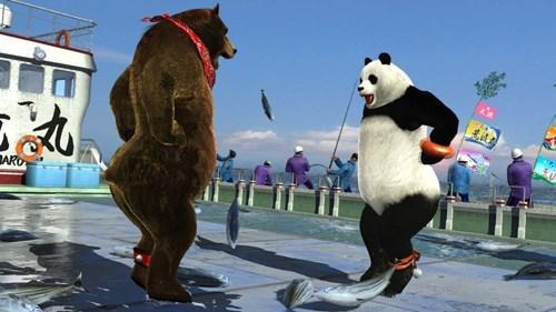 wtf fighting animals - 8299785216