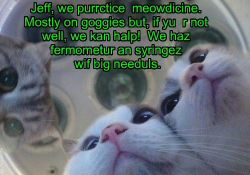 Jeff, we purrctice  meowdicine. Mostly on goggies but, if yu  r not well, we kan halp!  We haz fermometur an syringez  wif big needuls.