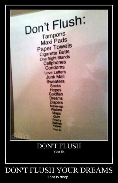 Babies,flush,dreams,toilet,funny