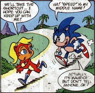 speed secret hedgehog sonic - 8300016896