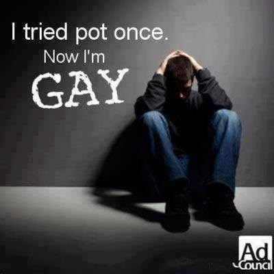 wtf drugs gay weed funny - 8300755200